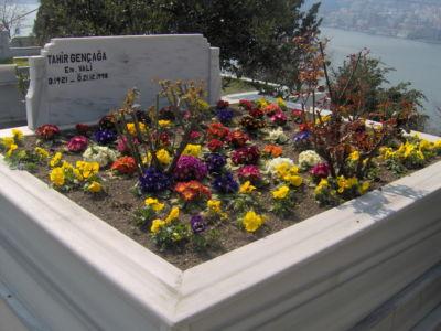 Çiçeklendirme 13